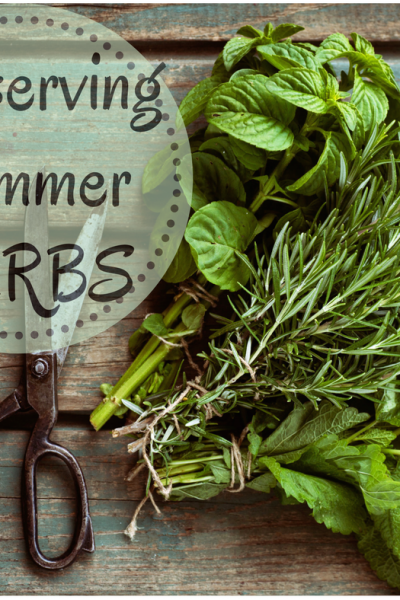 Not sure what to do with all of your herbs you planted? Here are some ideas for Preserving Summer Herbs as it's most likely way easier than you think.