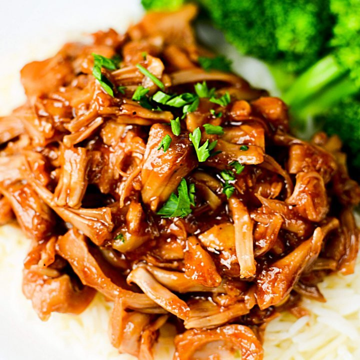 NINJA FOODI VEGETARIAN PULLED PORK