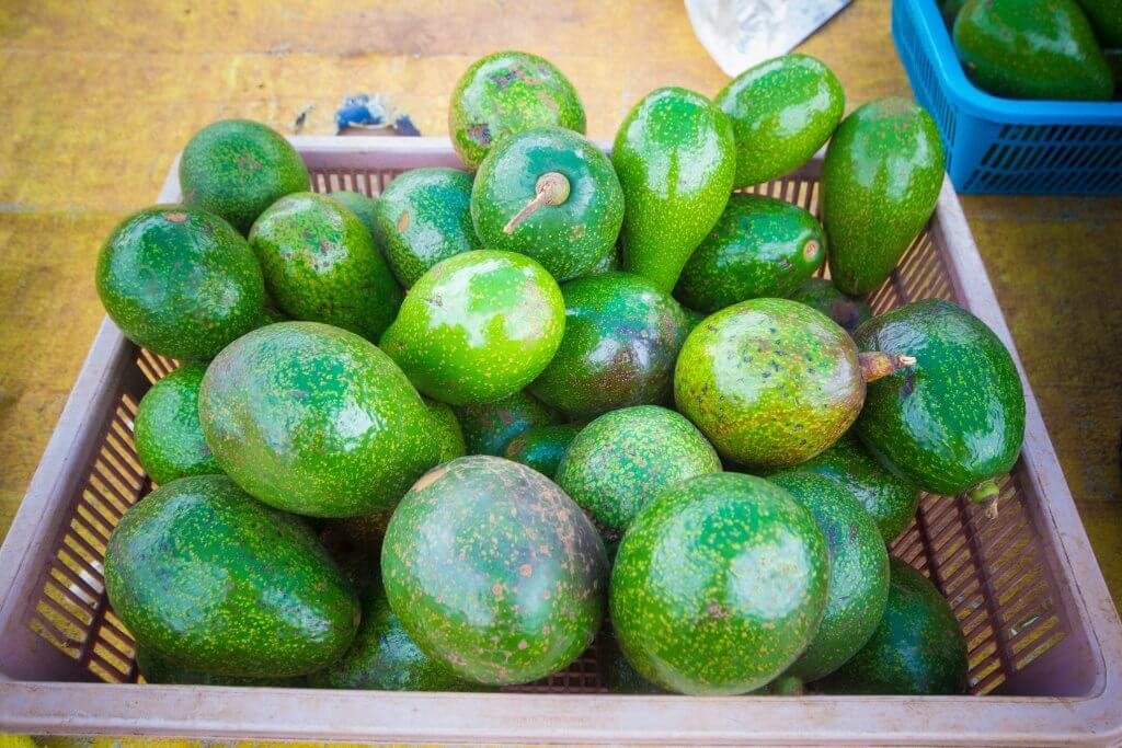 A  pile of green avocados are sitting in a brown basket.