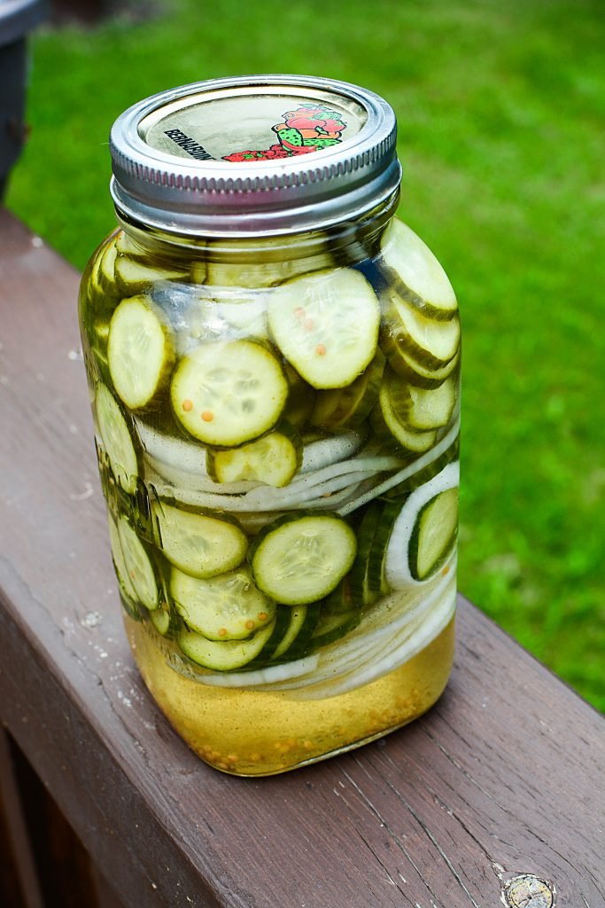 Freshly packed refrigerator pickles in a mason jar.