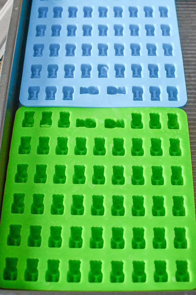 green and blue bear-shaped silicon mold.