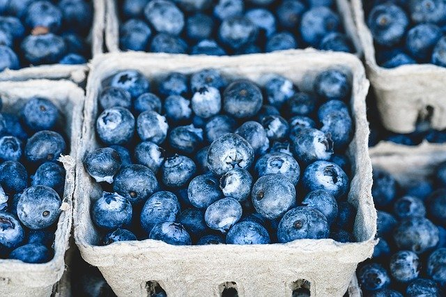 Blueberries in a paper market carton