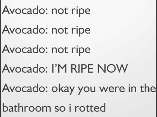 A funny joke about the ripening habits of avocados. They will basically ripen in no time flat, without you noticing.